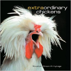Extraordinary Chickens Book