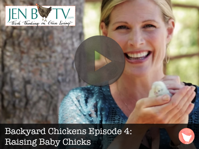 Backyard Chickens Episode 4: Raising Baby Chicks Thumbnail