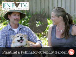 Planting a Pollinator Friendly Garden