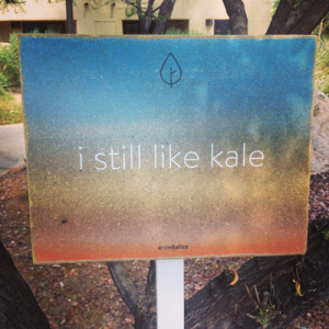 """I still love kale"" Revitalize Summit"