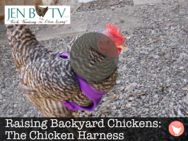 Hilarious Hen Harness